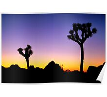 Almost Night Mojave Desert Poster
