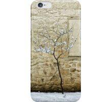 zulla road iPhone Case/Skin