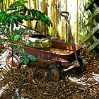 Rusty Wagon by ivancedesign