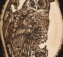 Tawny Owl On A Basswood Slice by Joanne Phillips