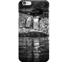 Reflecting on Friendship iPhone Case/Skin