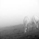 'From the mist - part I' by Petri Volanen