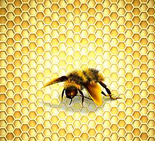 Honey Bee Comb by M-Sbt