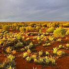 Golden sunlight at Kuli, Maralinga by Wayne England