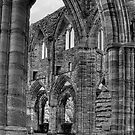 Tintern Abbey 2 by PaulHealey