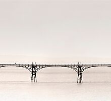 Clevedon Pier by Paul Woloschuk