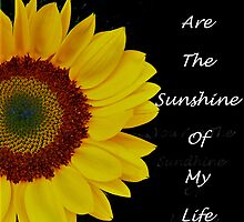 You Are The Sunshine of My Life by Kate Adams