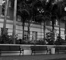 The Benches by shutterspeed