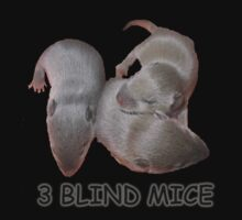 3 Blind Mice by Sharon Stevens