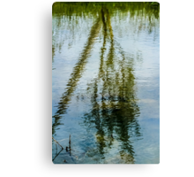 Tree reflected in water  Canvas Print