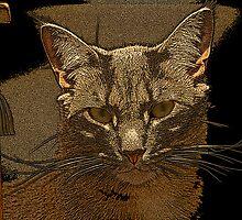 Cat Face by e. kendig
