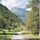 Una passeggiata sul Monte Rosa Macugnaga ItalIA -2000 VISUALIZ. GENNAIO 2015 - VETRINA RB EXPLORE 9 OTTOBRE 2012 by Guendalyn