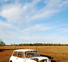Derelict Mini minor car on farm  by Speedy