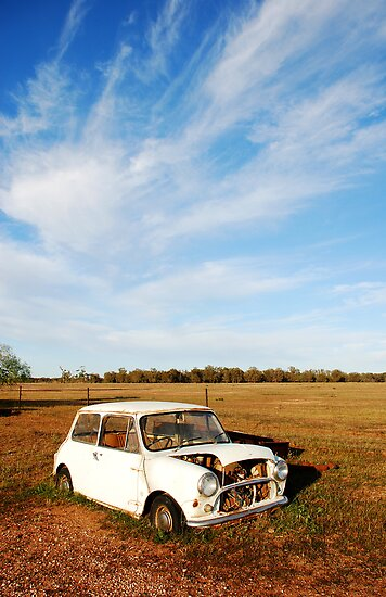 Derelict Mini minor car on farm  by Speedy