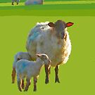 Mother with Lambs by Barry Thomas