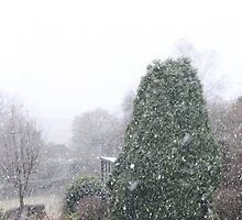 Here comes the snow - image 1 by missmoneypenny