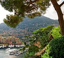 View of Fontvieille Harbor from Saint-Martin Gardens, Monaco by atomov