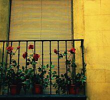 Rose Garden by Caroline Fournier