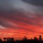 Sunset at Garah panorama by Michael Matthews