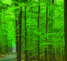 Green Trees - Impressions of Summer Forests Sticker
