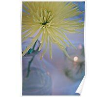 Dahlia Flower Still Life in Yellow Poster