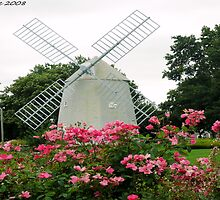 #496     Windmill & Roses At The Orleans Inn by MyInnereyeMike