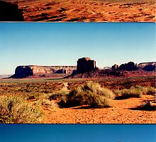 Beauty of the Southwest by Laurie Puglia