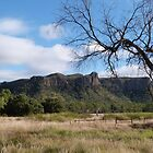 Queensland High Country, near Clermont. by Rita Blom