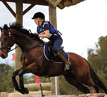 Show jumper by David  Hall