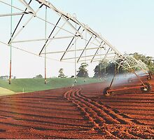 Irrigation  by cahinds