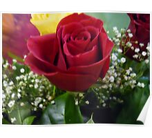 Red Red Roses Poster