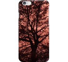Silhouetted Sunset Trees iPhone Case/Skin