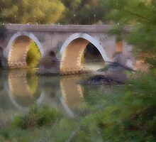 looking the bridge by monica palermo