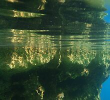 Above And Below Water by Malcolm Snook