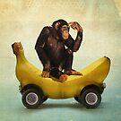 Chimp my Ride by vinpez