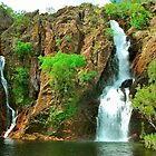 Wangi Falls by peasticks