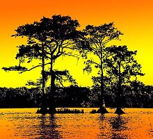 Cypress Tree Silhouettes by Babslady