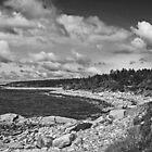 Coastline by Ben Kelly
