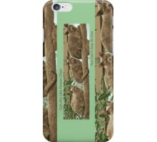 Cats Are Like Potato Chips iPhone Case/Skin