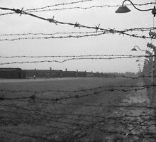 Auschwitz Birkenau by justineb