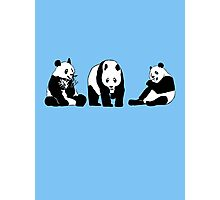 Funny panda party Photographic Print