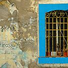Window, Barcelona, Spain by fauselr