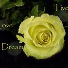 Live love dream... by Coloursofnature