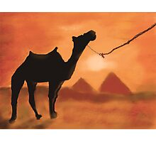Egyptian Sunset Photographic Print