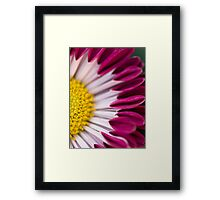 Summer Says Goodbye. Framed Print