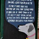 A Fun Sign At Shaldon, Teignmouth Devon UK by lynn carter