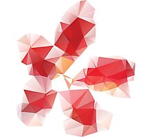 Red Polygonal Flower Photographic Print