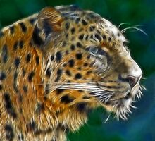 THE LEOPARD by mlynnd