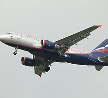 Airbus A319 in the air by mrivserg