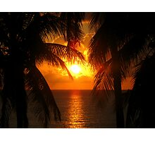 Palm Tree Silhouette, Sunset Photographic Print